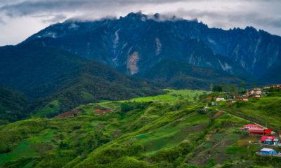 Unsplash/Ryan 'O' Niel Malasia es uno de los países con la mayor biodiversidad del mundo.
