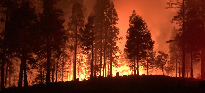 Los bomberos de California y otras partes de la costa oeste de los Estados Unidos luchan por contener los incendios forestales.
